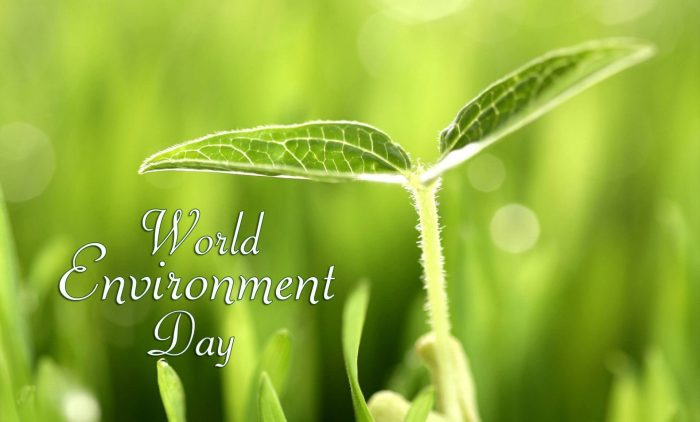 Happy World Environment Day 2019 Images